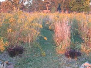 Jubilee Farm Labyrinth