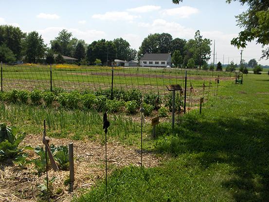 Jubilee Farm Garden 1