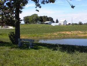 Jubilee Farm Scenery 12